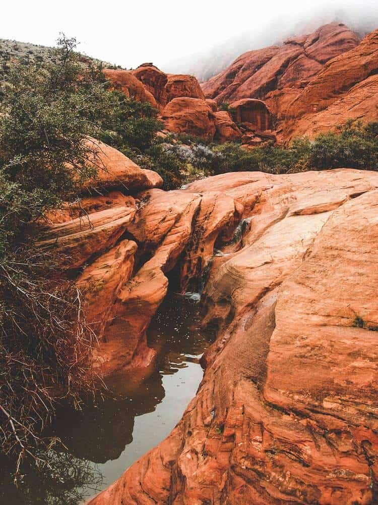 Hiking and Rock Climbing at Red Rock Canyon - Calico Basin Red Springs. See 14 Unique things to do in Las Vegas! There are so many incredible places to see in Las Vegas, here are some of the top places you will not want to miss on your vacation! avenlylane.com | #vegas #lasvegas #nevada #travel #vegas #vacation #travel #avenlylanetravel