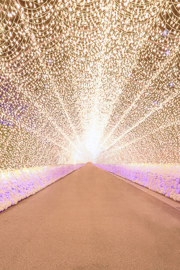 The most beautiful places in Japan! Winter Light Festival is a must see of course! #Japan #avenlylane #travel