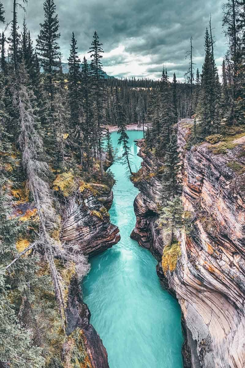 Athabasca Canyon in Jasper National Park, Alberta Canada